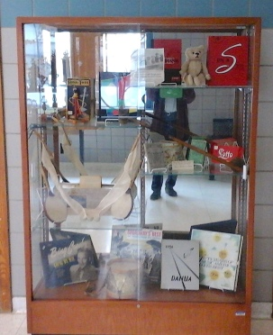 dahs-display-case